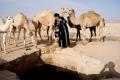 Tränken der Kamele am nahegelegenen Wasserloch, Foto: Maria Estalla Dürnecker