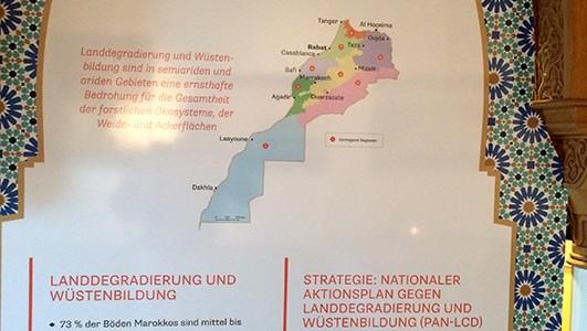 Ausstellungseröffnung – Marokkos Wälder entdecken